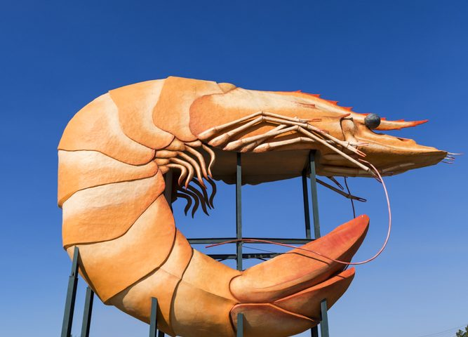 Big Prawn, NSW