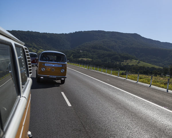 Ginger Bus Cruise!